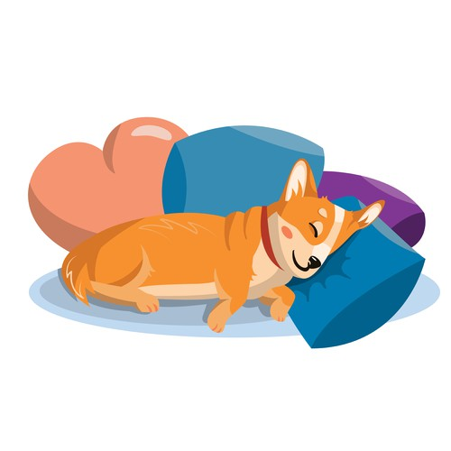 Sleeping corgi