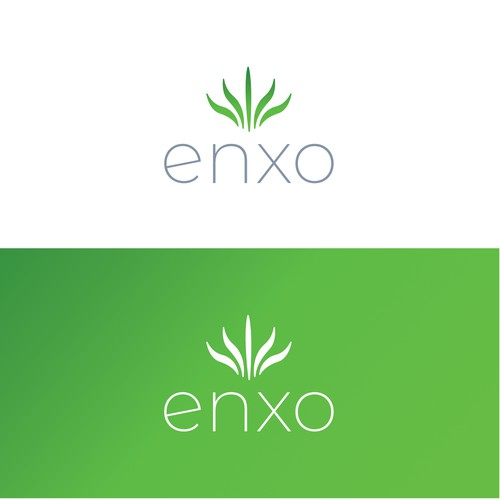 ENXO Logo Design