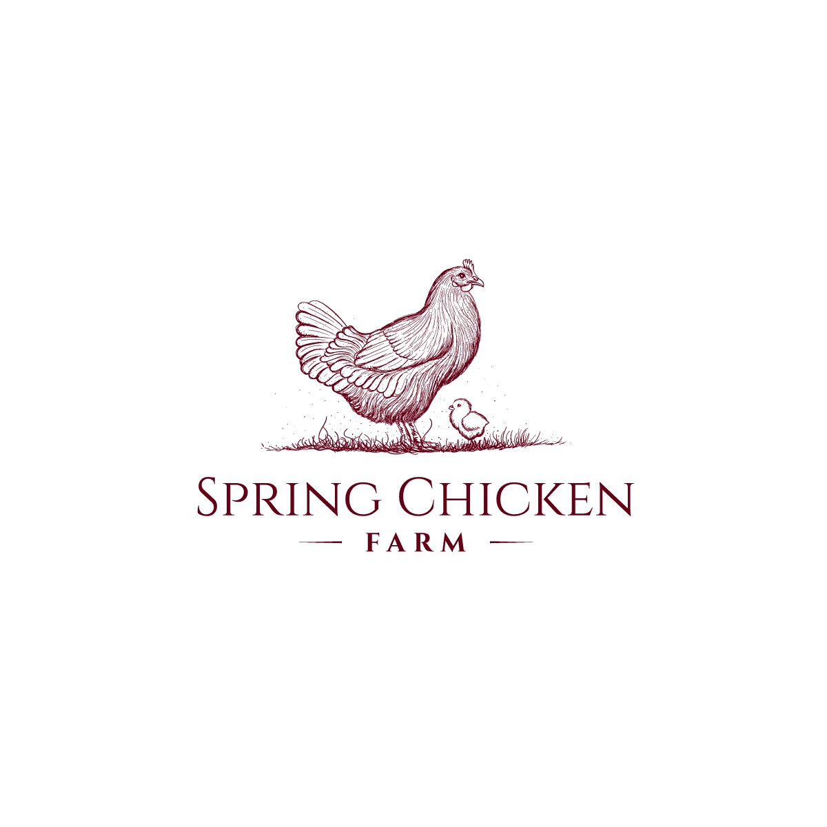Spring Chicken Farm