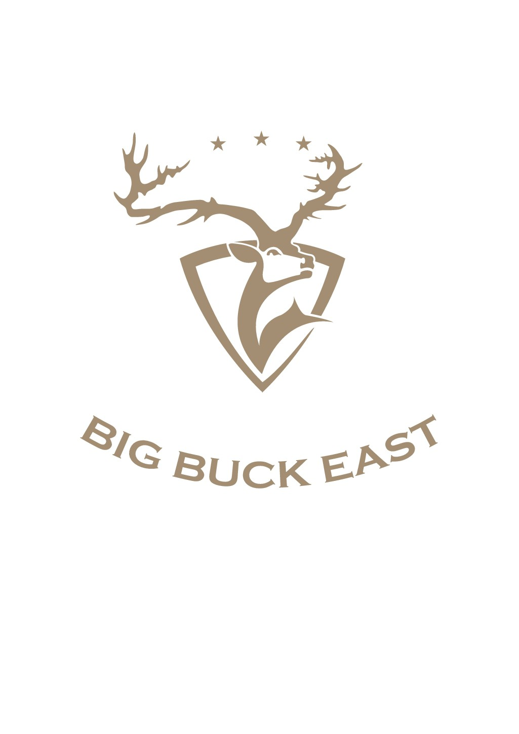 Help us raise big bucks for a good cause with your BIG BUCK design!