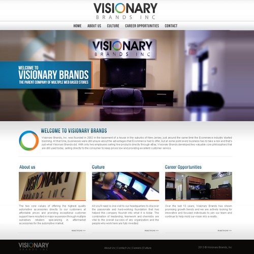 DESIGN VISIONARY BRANDS INC NEW CORPORATE WEBSITE