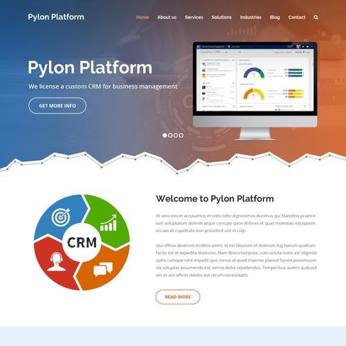 Website concept for Pylon