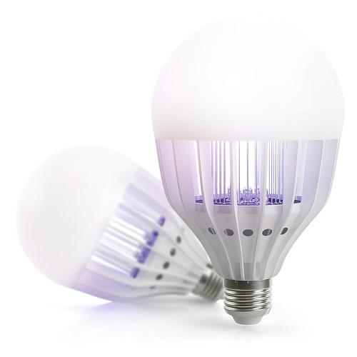 Light Bulb Rendering