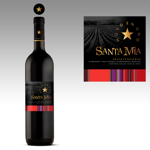 Design a contemporary new look and feel for popular Chilean wine brand!