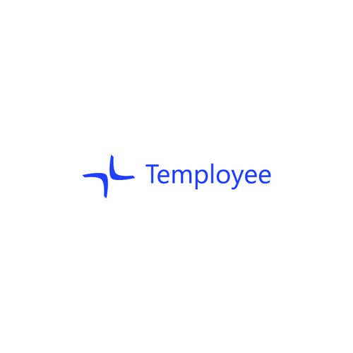 Boomerang logo for Temployee