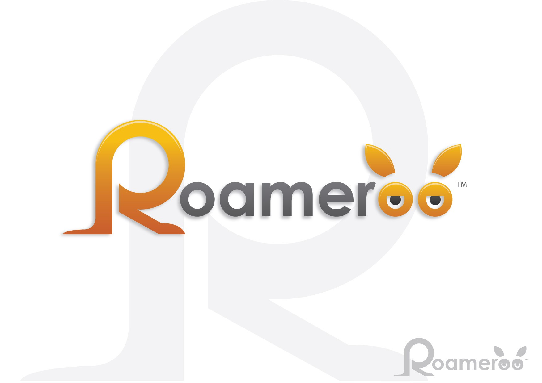 New logo wanted for Roameroo