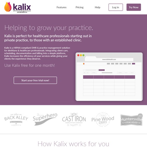 Single page website concept for a medical software company