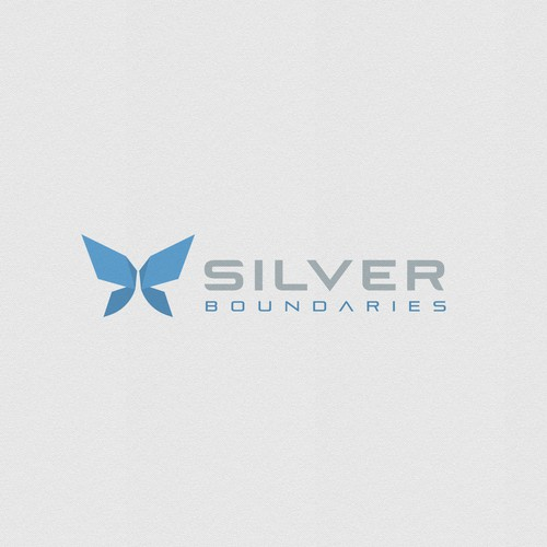 Logo for Silver Boundaries