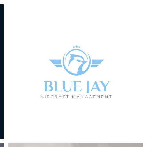 Logo concept for Blue Jay Aircraft Management