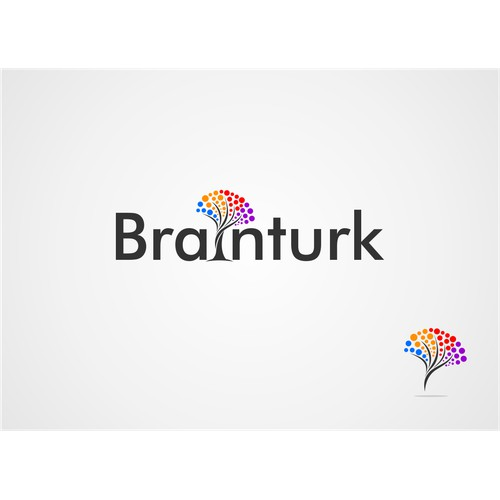 New logo wanted for Brainturk