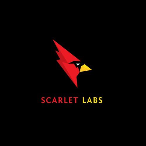 Sharp and neat Cardinal logo