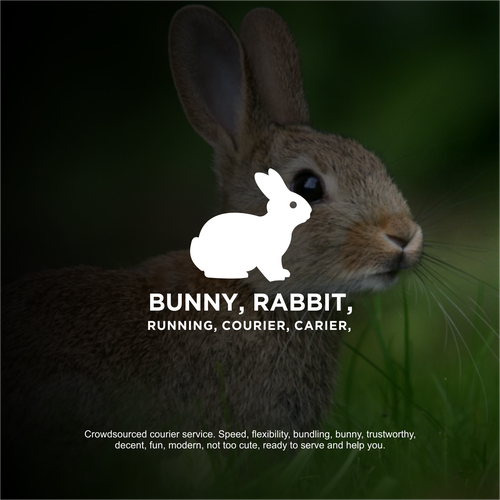 Bunny, Rabbit, Running, Courier, Carier,