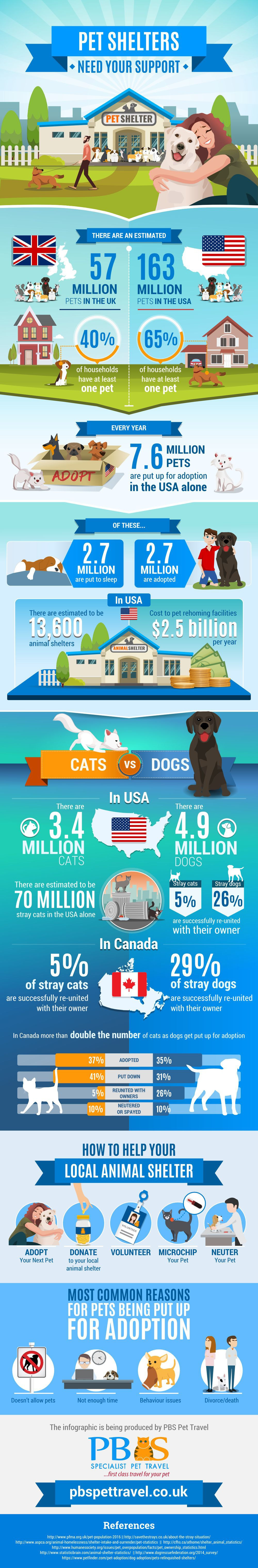 Fun Pet-Related Infographic Design Required