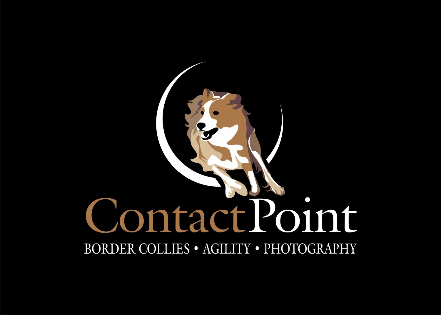 Create the next logo for Contact Point Photography