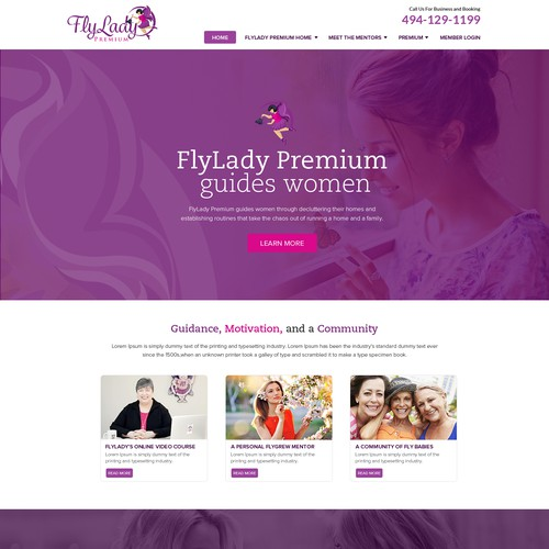 Web Design Concept For Fly Lady