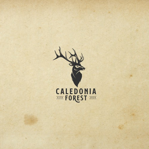 caledonia forest