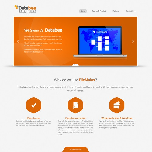Help Databee Business Systems with a new website design