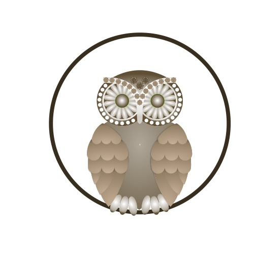 Owl Cleaning and Care Logo Design