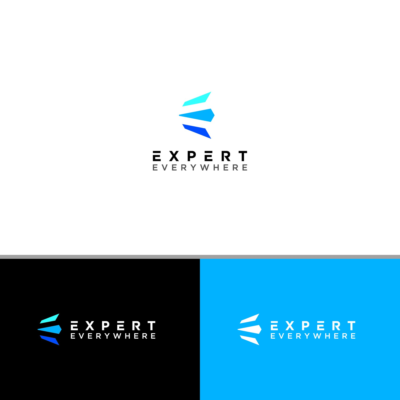 High-End Logo to Attract People Seeking Expert Status
