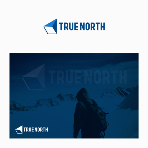 concept logo truenorth