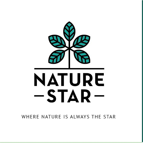 Logo identity for natural food company