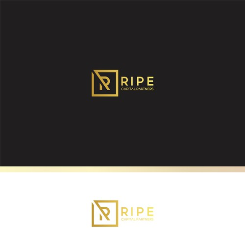 Modern Luxurious Logo for New Capital Investment Firm