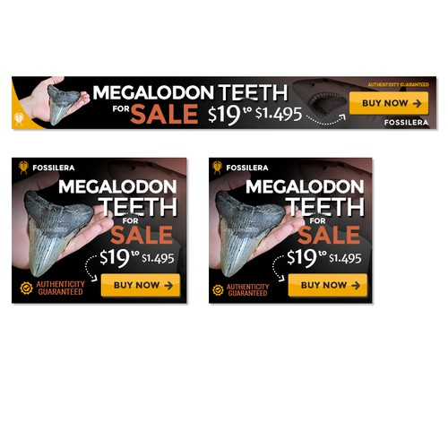 Banners Ad Megalodon Teeth For Sale