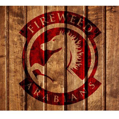 Fiery horse emblem design