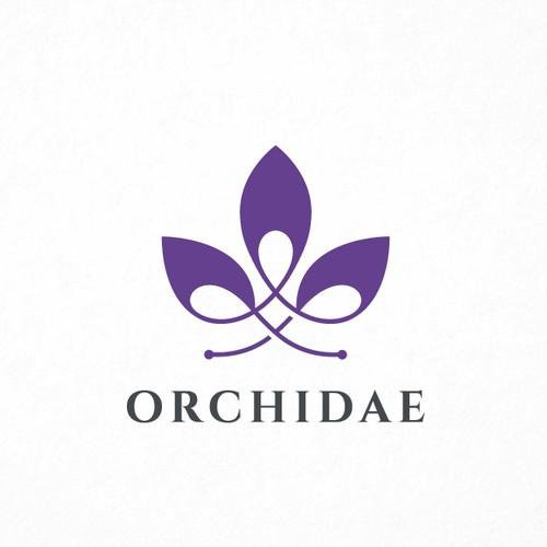 Orchidae