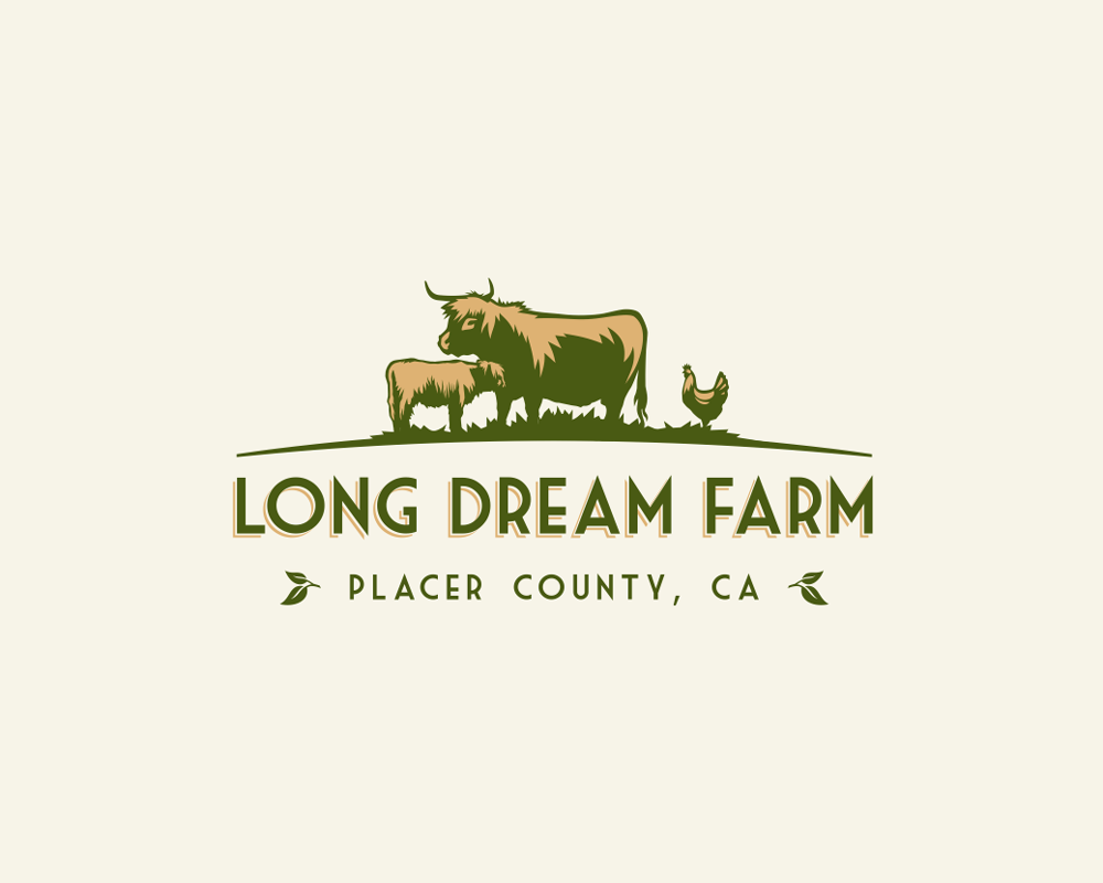 Logo for Highland Cattle farm in Northern California