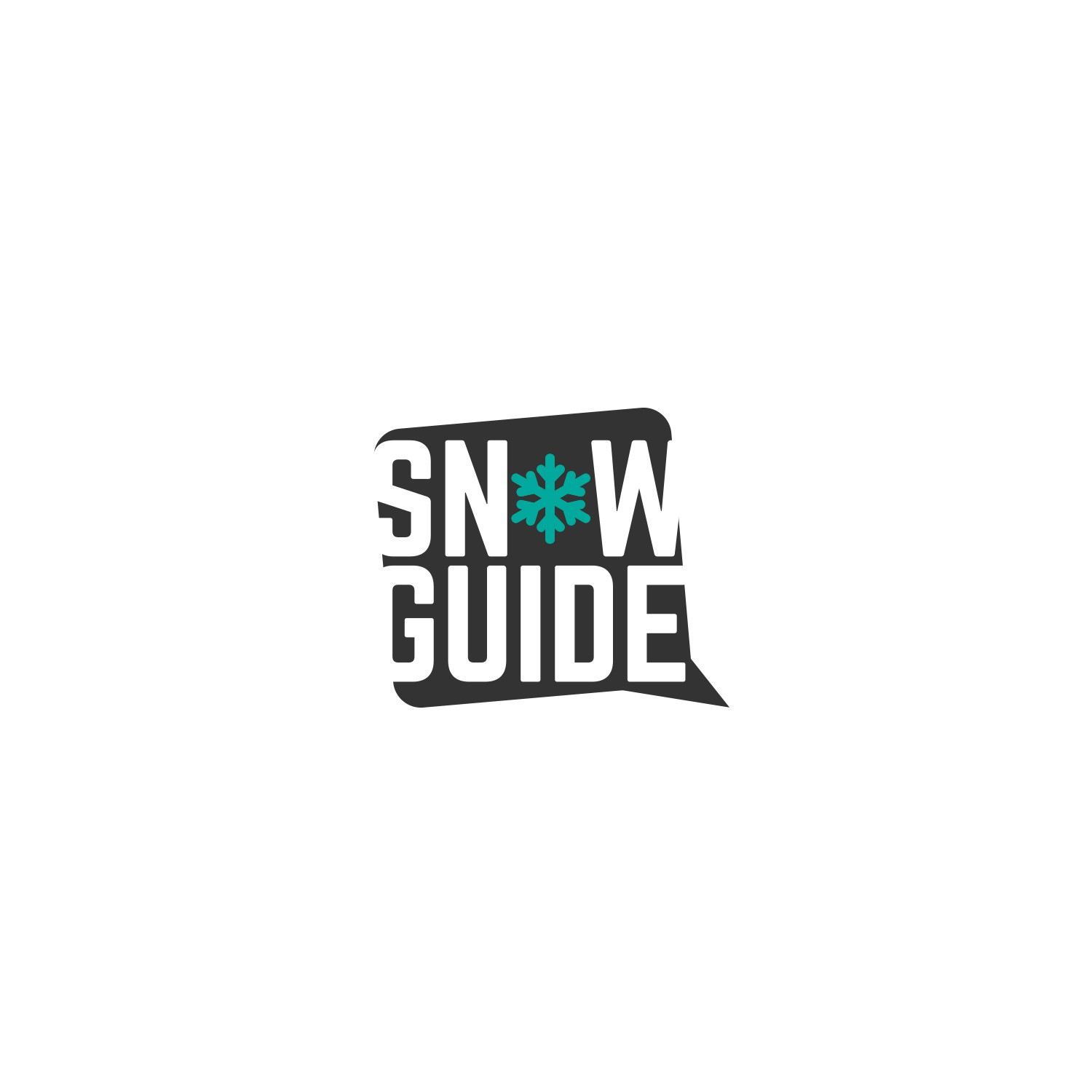 Logo needed for snow sports website