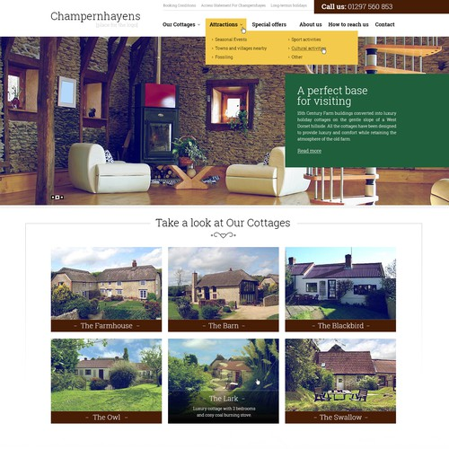 Website Concept for Champernhayens