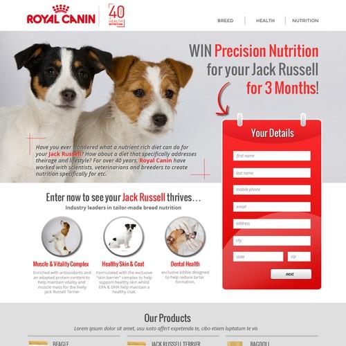 Bold Website/Landing Page Design