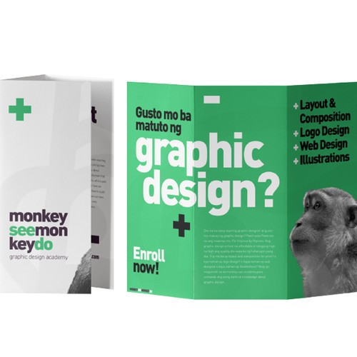 Brochure Design for Monkey See Monkey Do