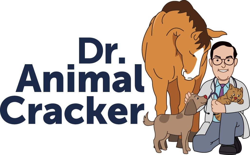 Dr. Animal Cracker wants to see Your amazing Creativity!