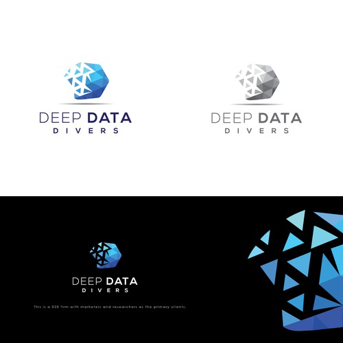 Deep Data Divers
