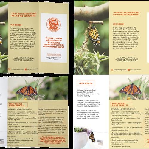 Brochure for butterflies