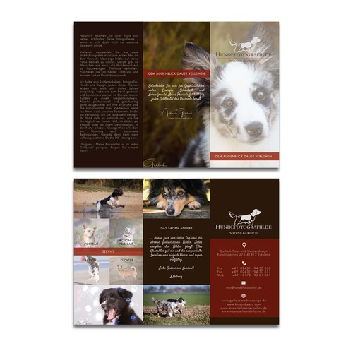 animal photography brochure