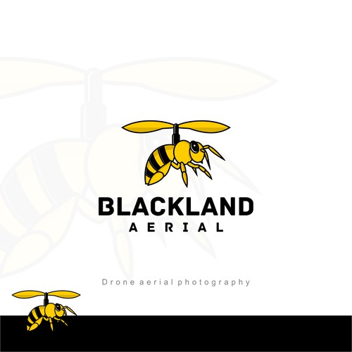 Blackland Aerial