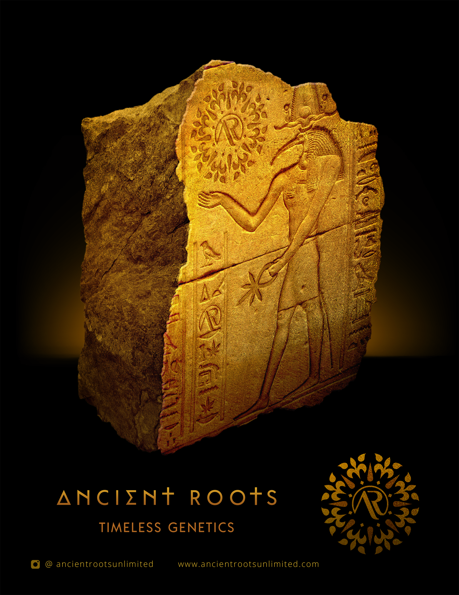 Ancient Roots Magazine Ad