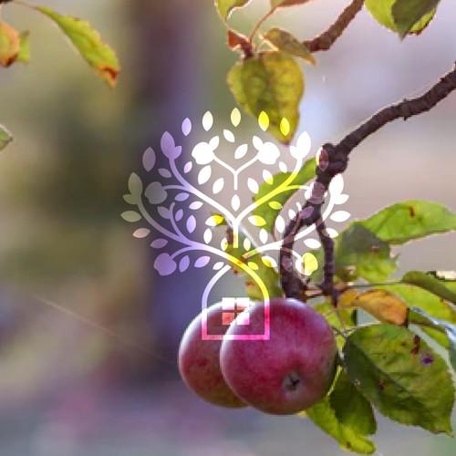 Apple Tree Homes Inc Logo