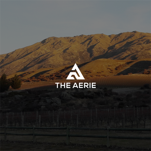 the aerie company