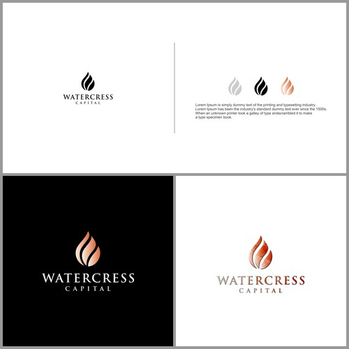 logo concept accounting and finance