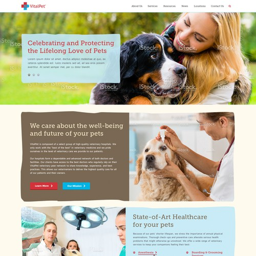 Web Page Design For VitalPet