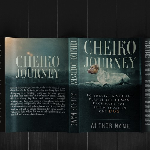 Cheiko Journey