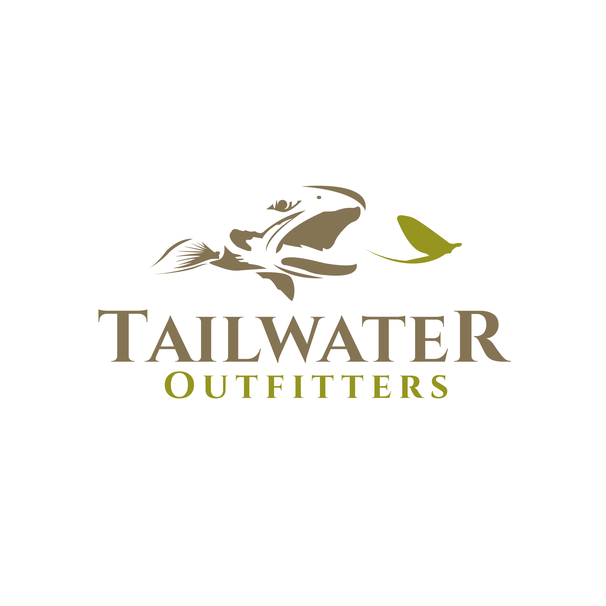 A beautiful fly fishing logo for a new flyfishing company
