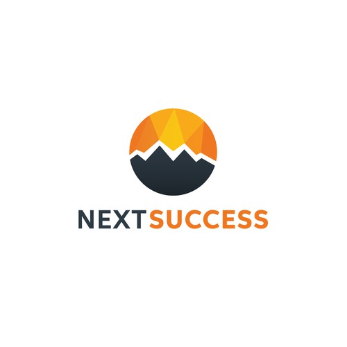 Next Success logo concept