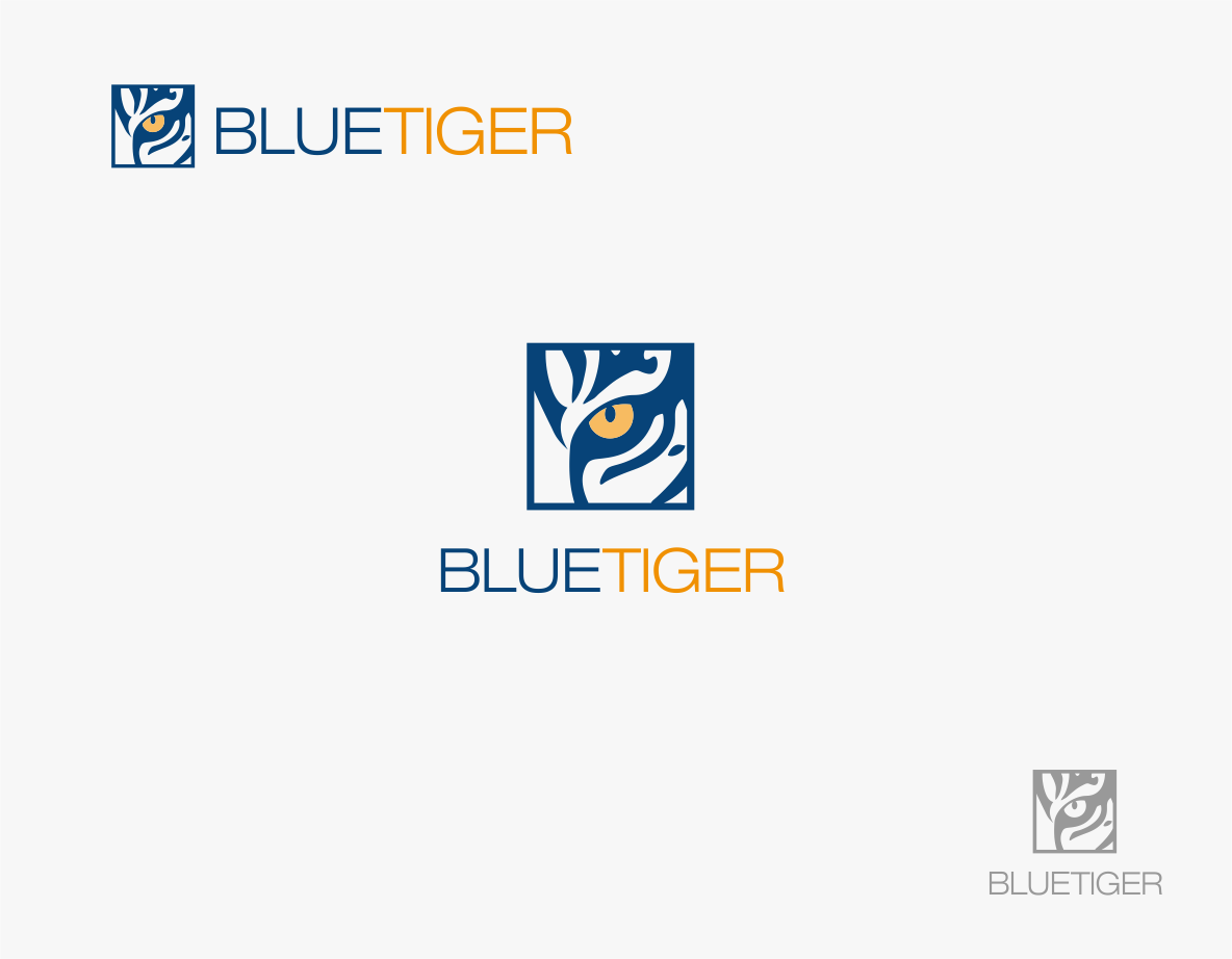 Brand a new company with logo design for BlueTiger
