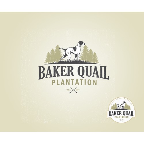 Logo concept for a quail hunting plantation