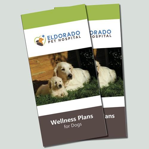 Brochure concept for pet hospital